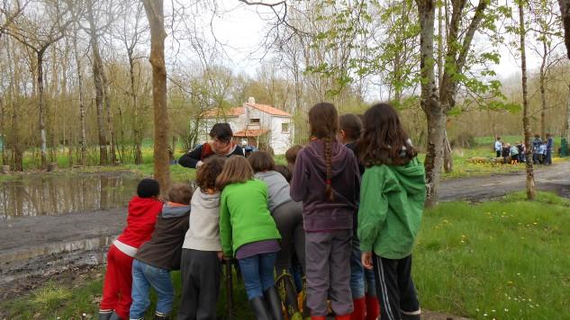 Organiser une classe verte